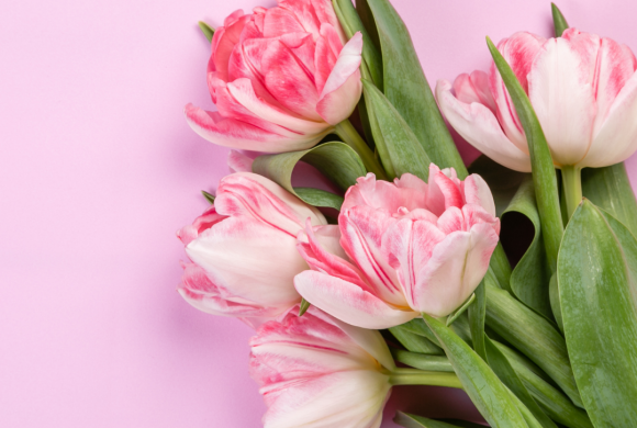 Mother's Day top Picks