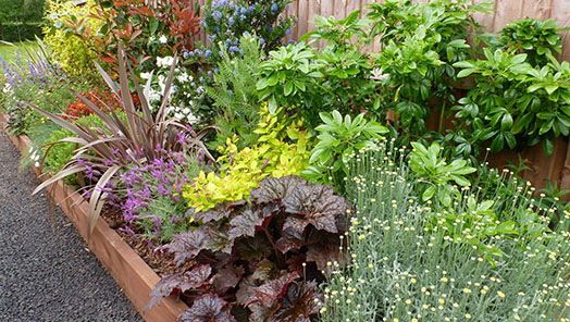 garden-on-a-roll-resizedw_1-033729